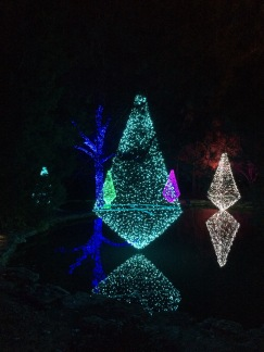 Beautiful lights at Cheekwood!